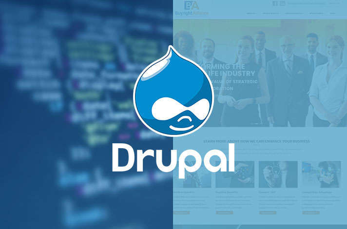 Services-drupal-development-how-we-work